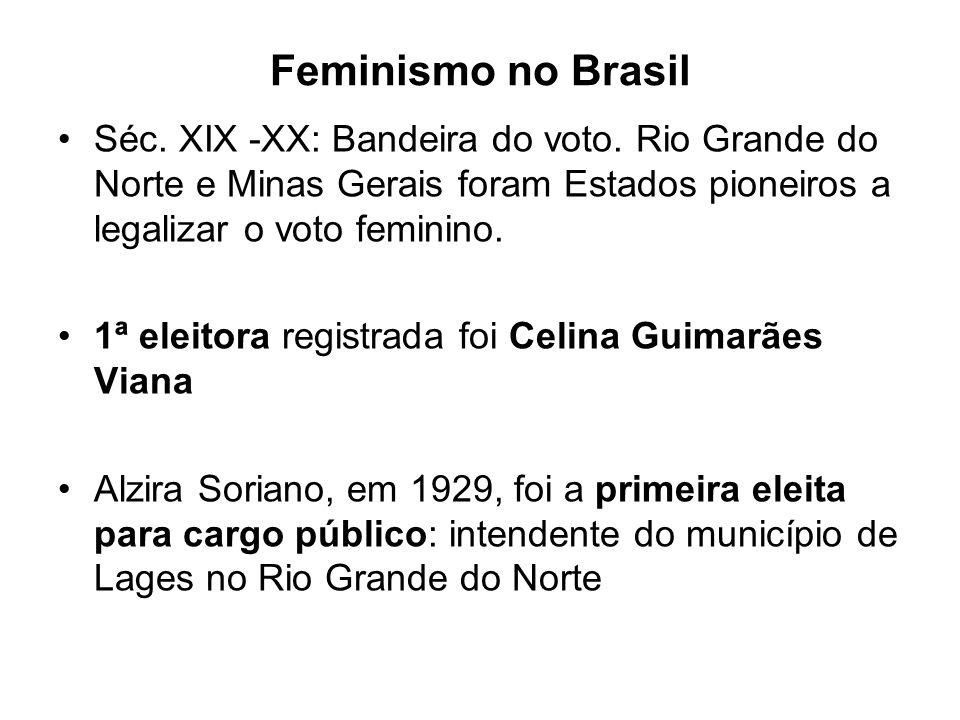 Feminismo no Brasil Séc. XIX -XX: Bandeira do voto. Rio Grande do Norte e Minas Gerais foram Estados pioneiros a legalizar o voto feminino.