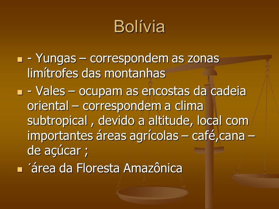 Bolívia - Yungas – correspondem as zonas limítrofes das montanhas