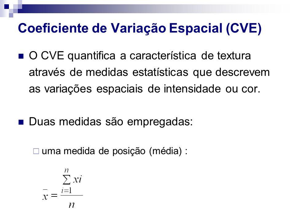 Coeficiente de Variação Espacial (CVE)