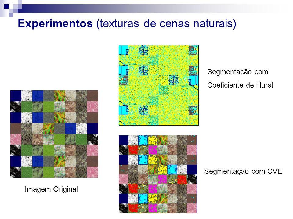 Experimentos (texturas de cenas naturais)