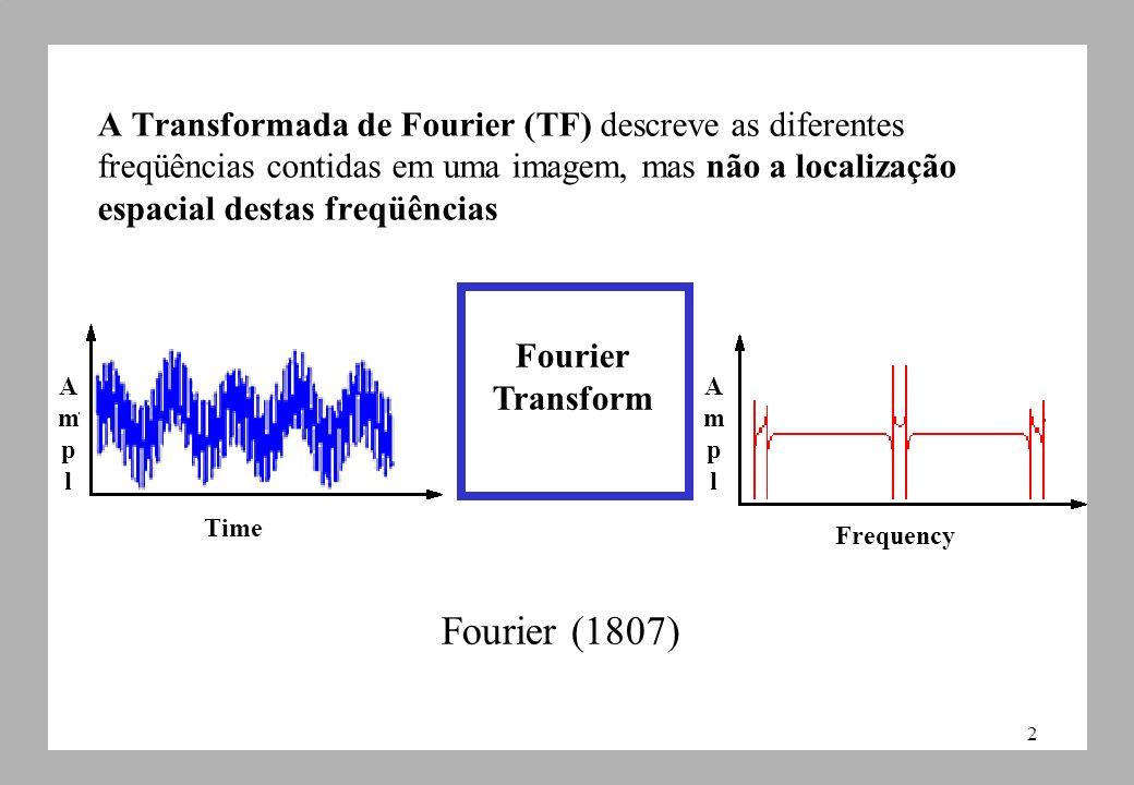 A Transformada de Fourier (TF) descreve as diferentes freqüências contidas em uma imagem, mas não a localização espacial destas freqüências