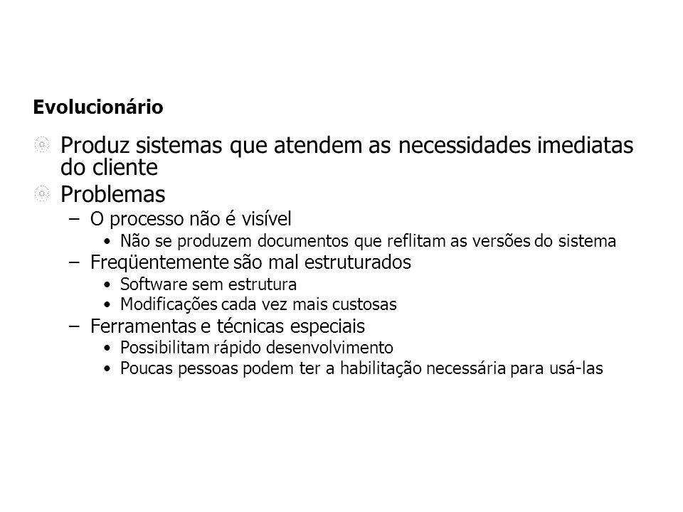 Produz sistemas que atendem as necessidades imediatas do cliente