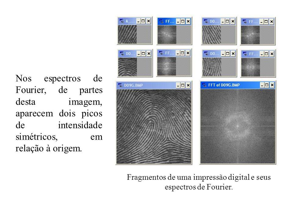 Fragmentos de uma impressão digital e seus espectros de Fourier.