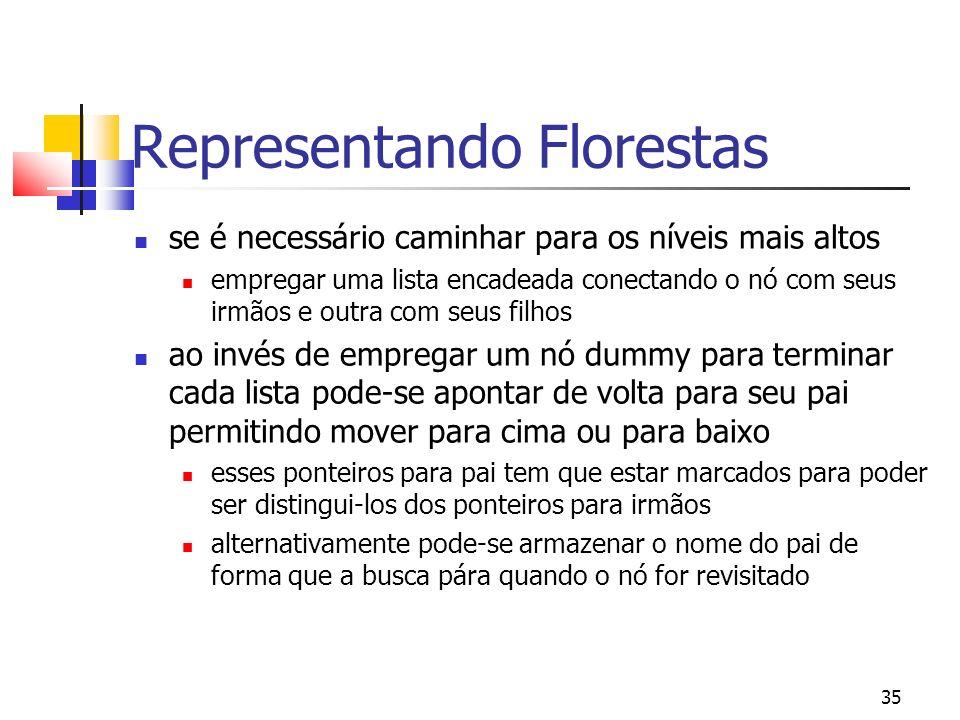 Representando Florestas