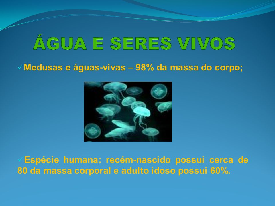 ÁGUA E SERES VIVOS Medusas e águas-vivas – 98% da massa do corpo;