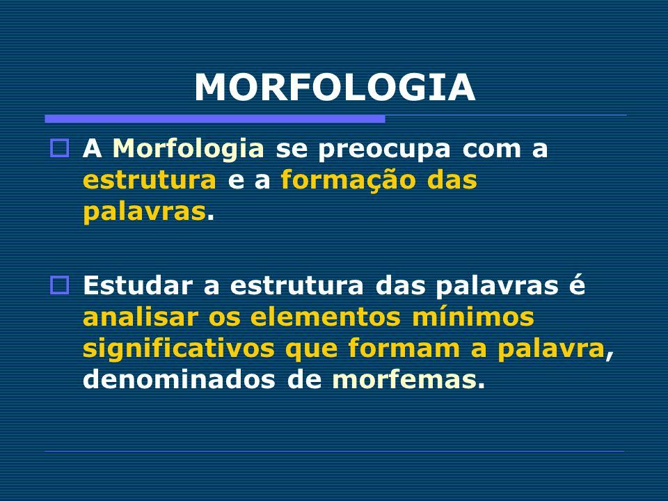 MORFOLOGIA A Morfologia se preocupa com a estrutura e a formação das palavras.