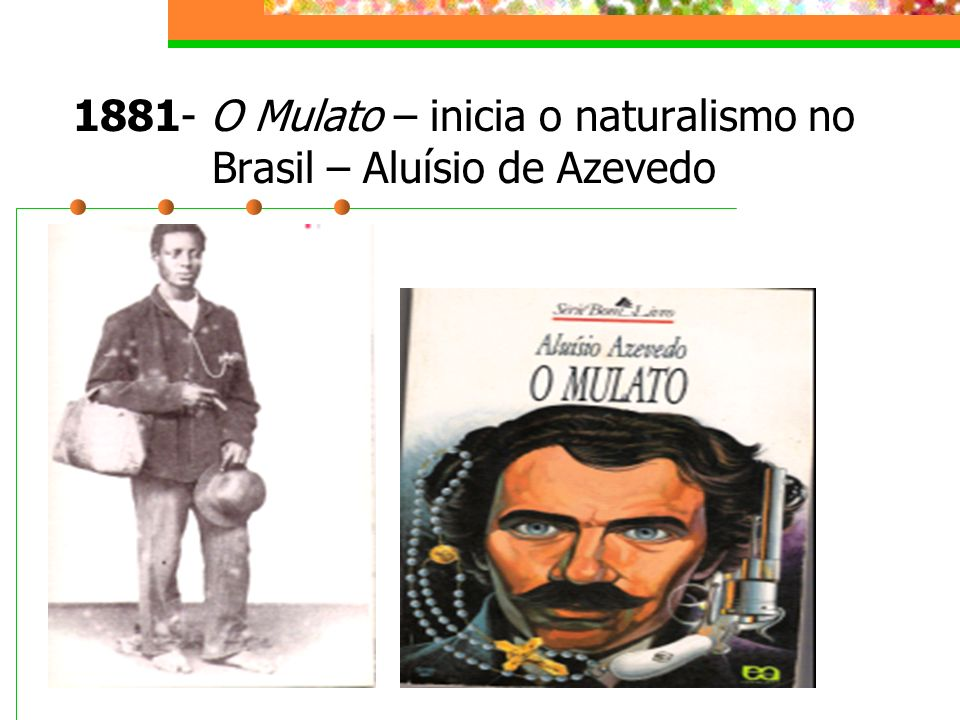1881- O Mulato – inicia o naturalismo no Brasil – Aluísio de Azevedo