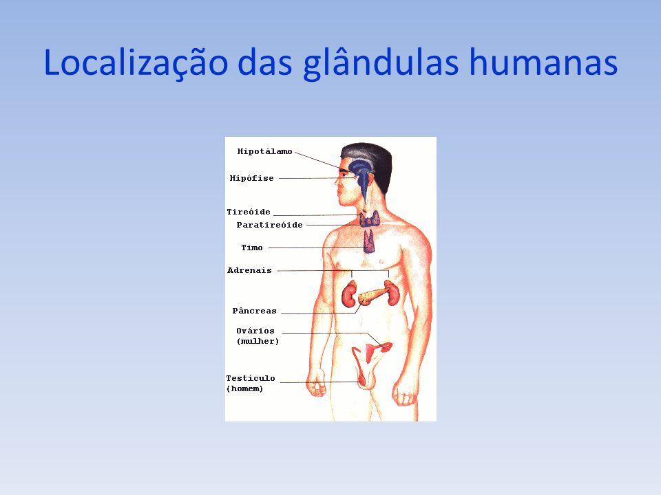 Localização das glândulas humanas