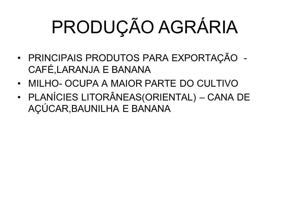PRODUÇÃO AGRÁRIA PRINCIPAIS PRODUTOS PARA EXPORTAÇÃO - CAFÉ,LARANJA E BANANA. MILHO- OCUPA A MAIOR PARTE DO CULTIVO.