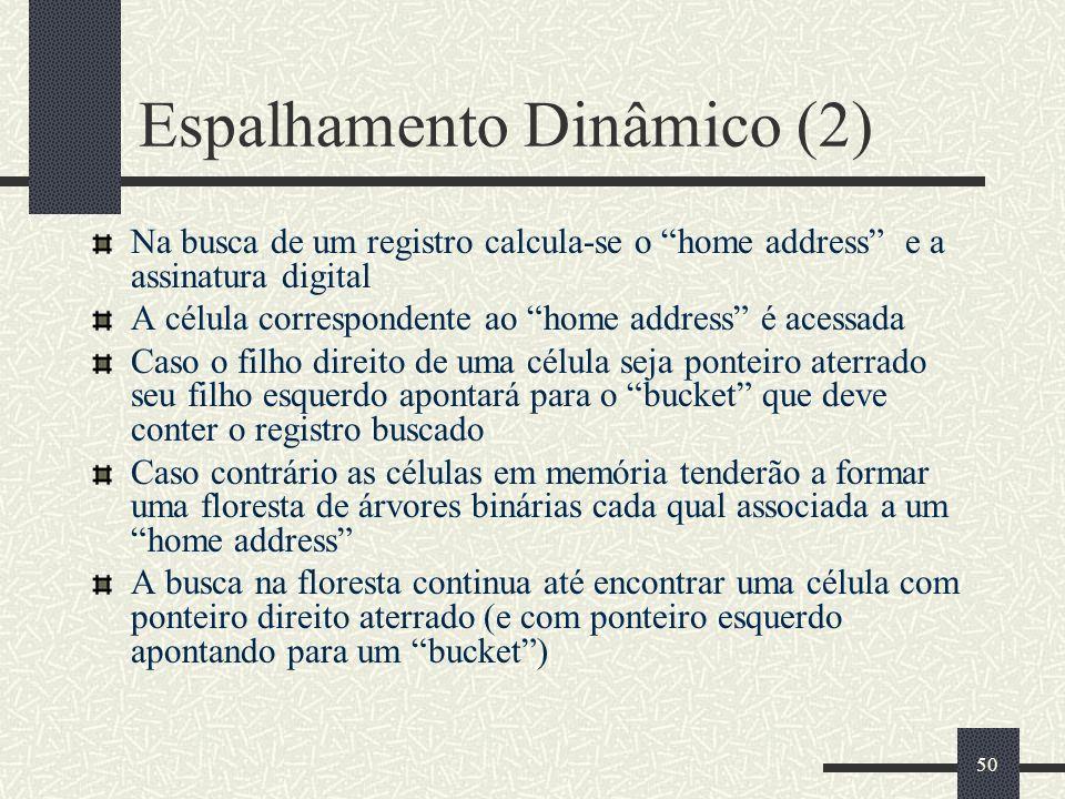 Espalhamento Dinâmico (2)