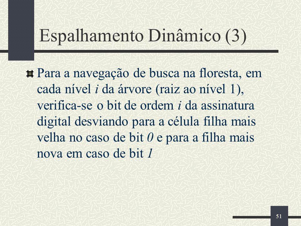 Espalhamento Dinâmico (3)