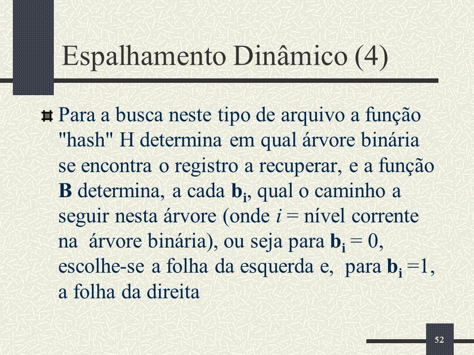 Espalhamento Dinâmico (4)