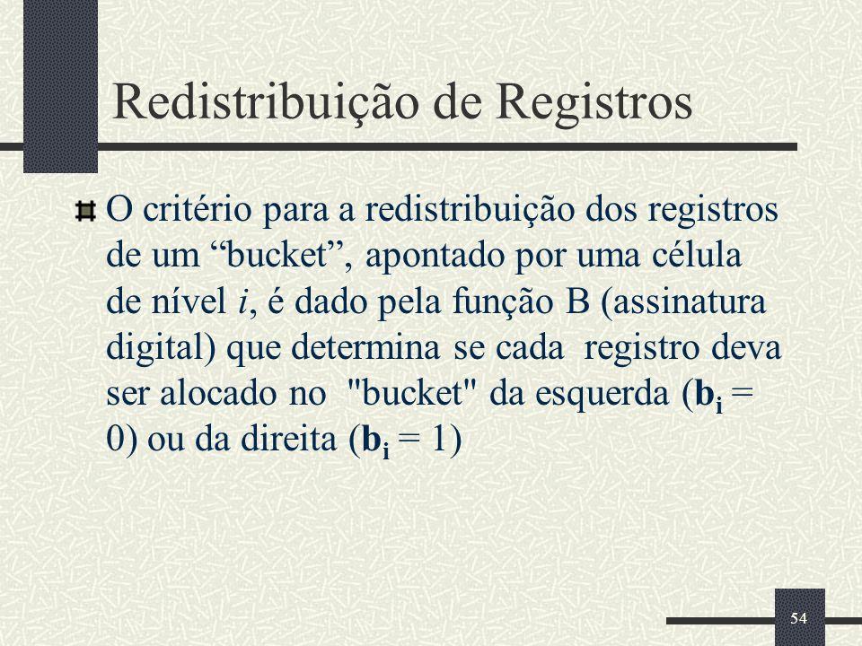 Redistribuição de Registros