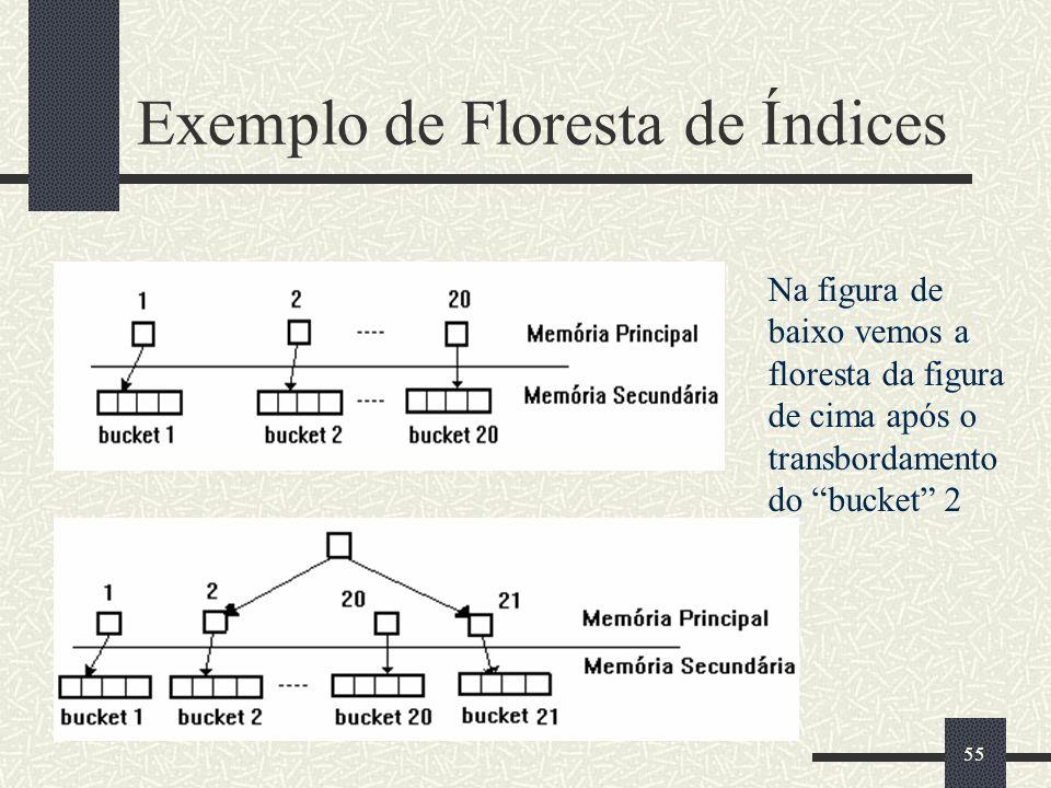 Exemplo de Floresta de Índices