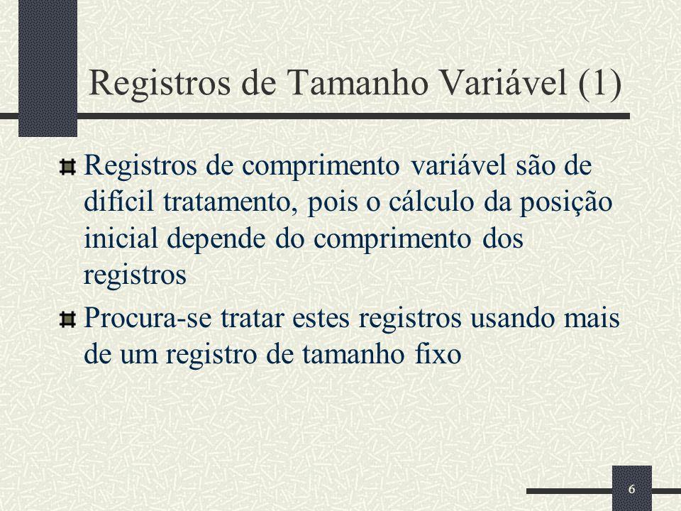 Registros de Tamanho Variável (1)