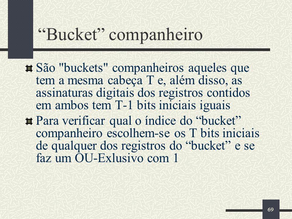 Bucket companheiro