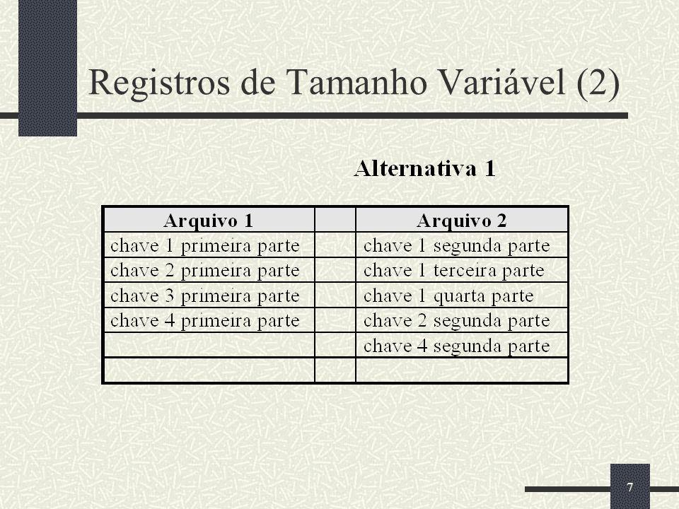 Registros de Tamanho Variável (2)