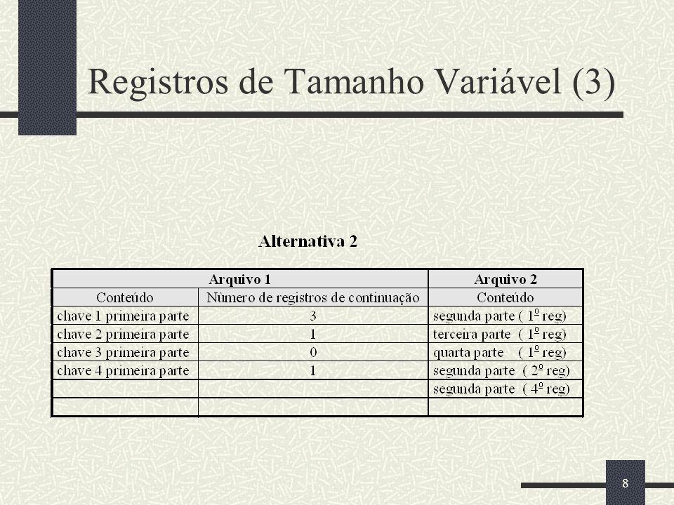 Registros de Tamanho Variável (3)