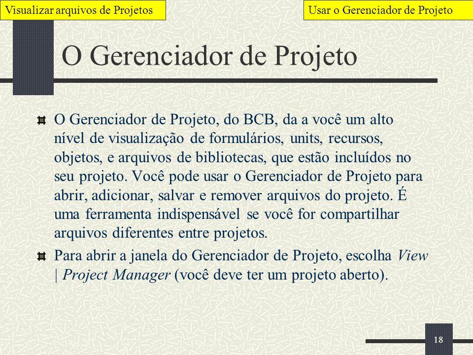 O Gerenciador de Projeto