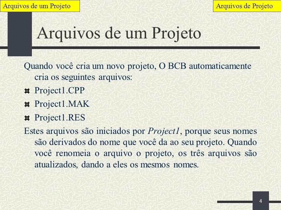Arquivos de um Projeto Arquivos de Projeto. Arquivos de um Projeto.