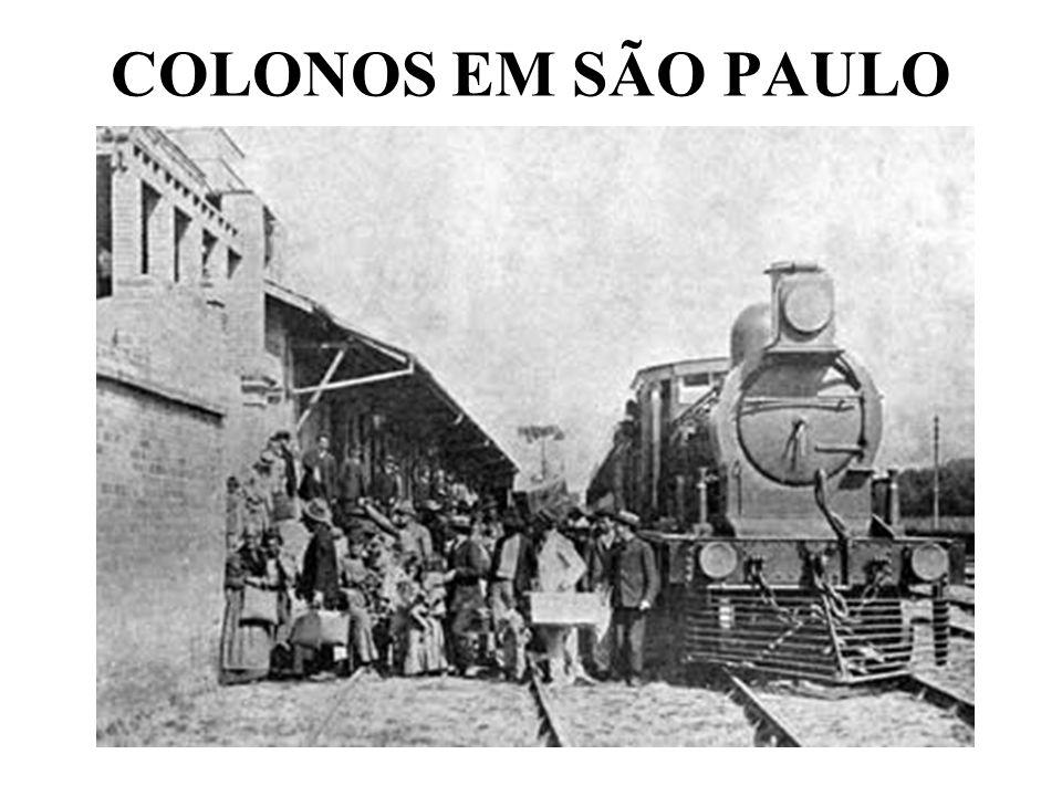 COLONOS EM SÃO PAULO