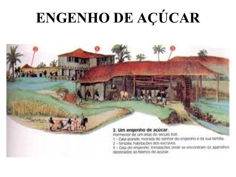 ENGENHO DE AÇÚCAR
