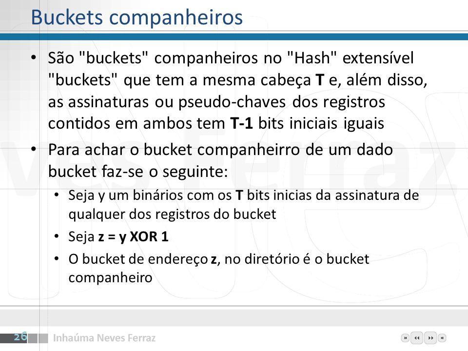 Buckets companheiros