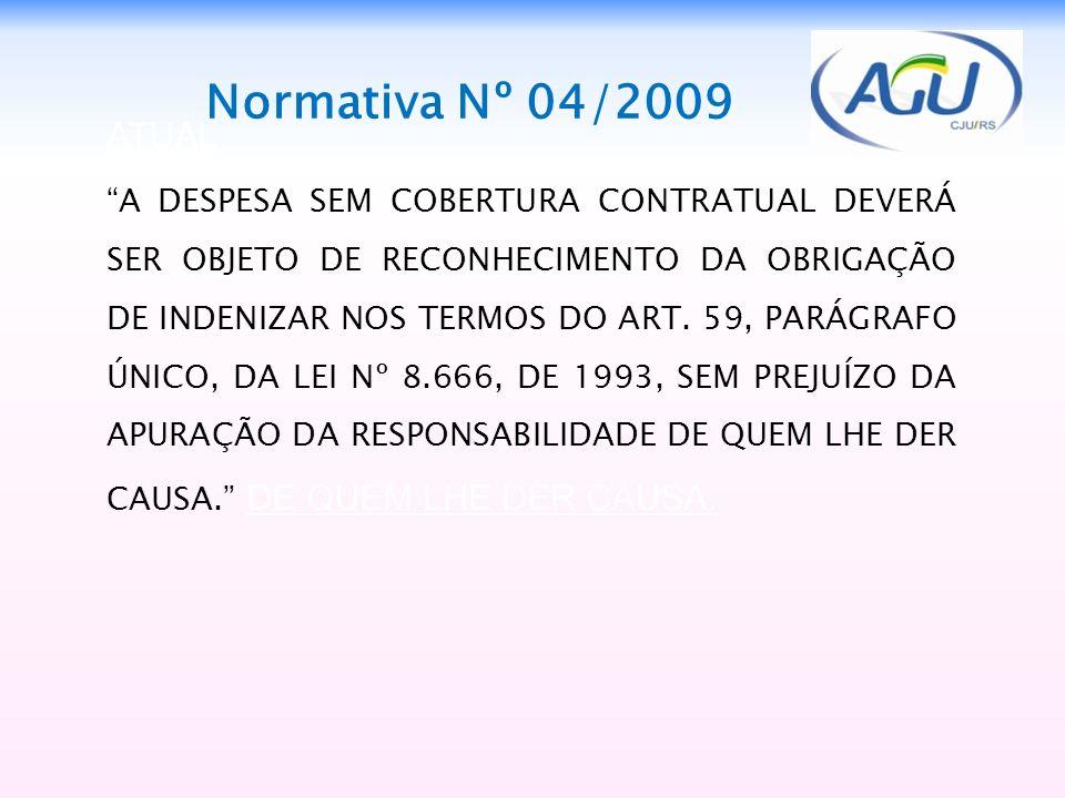 1313 Normativa Nº 04/2009. ATUAL.