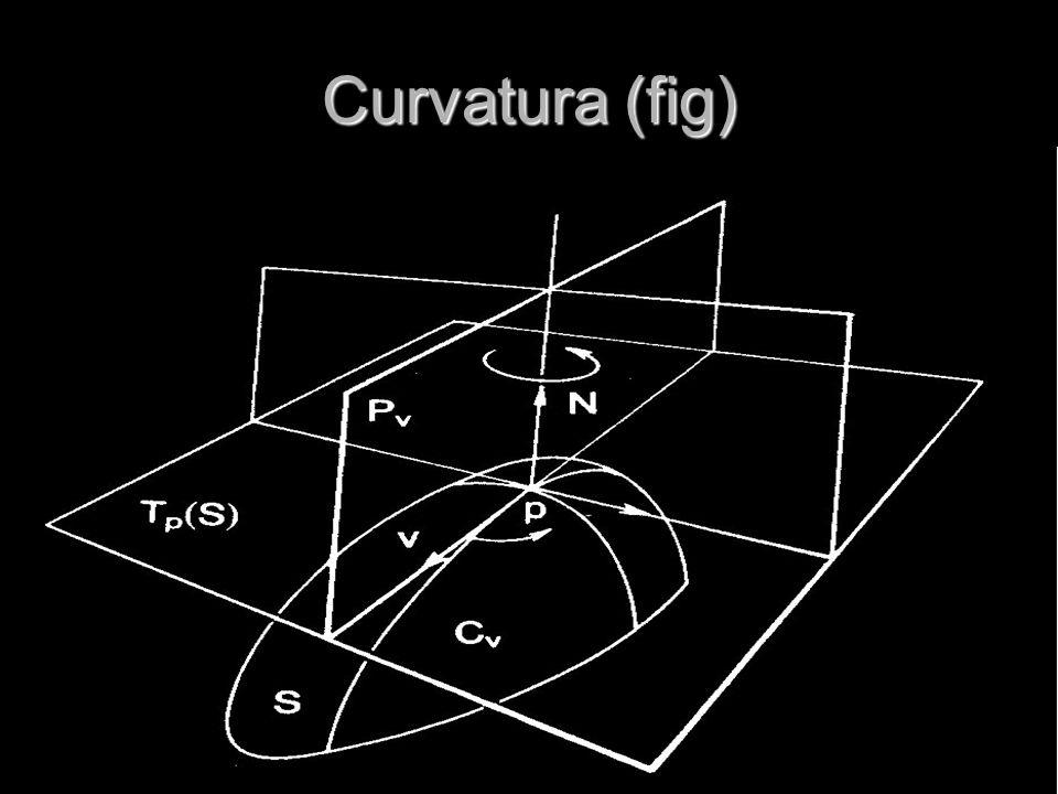 Curvatura (fig)