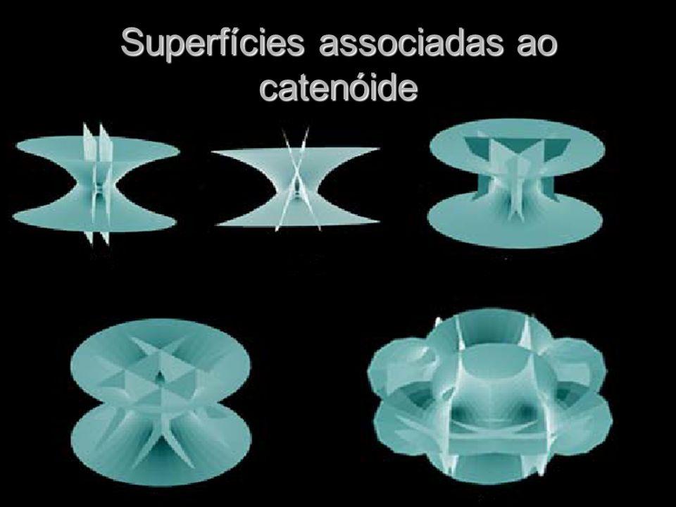 Superfícies associadas ao catenóide