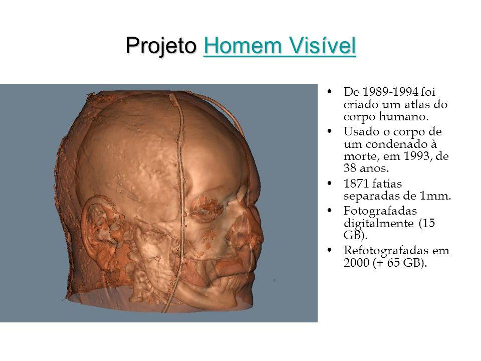 Projeto Homem Visível De 1989-1994 foi criado um atlas do corpo humano. Usado o corpo de um condenado à morte, em 1993, de 38 anos.