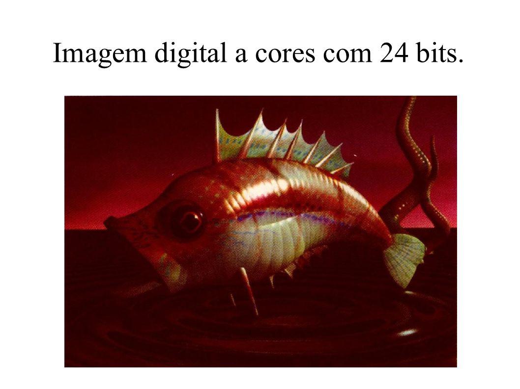Imagem digital a cores com 24 bits.