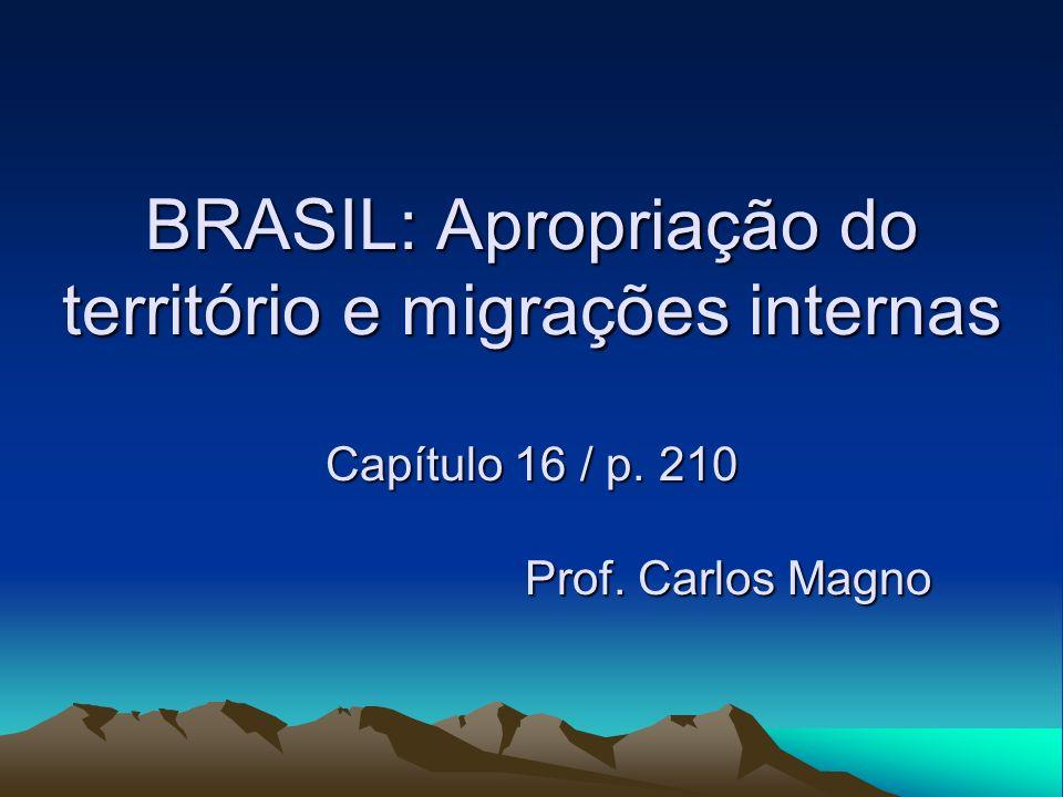 BRASIL: Apropriação do território e migrações internas Capítulo 16 / p