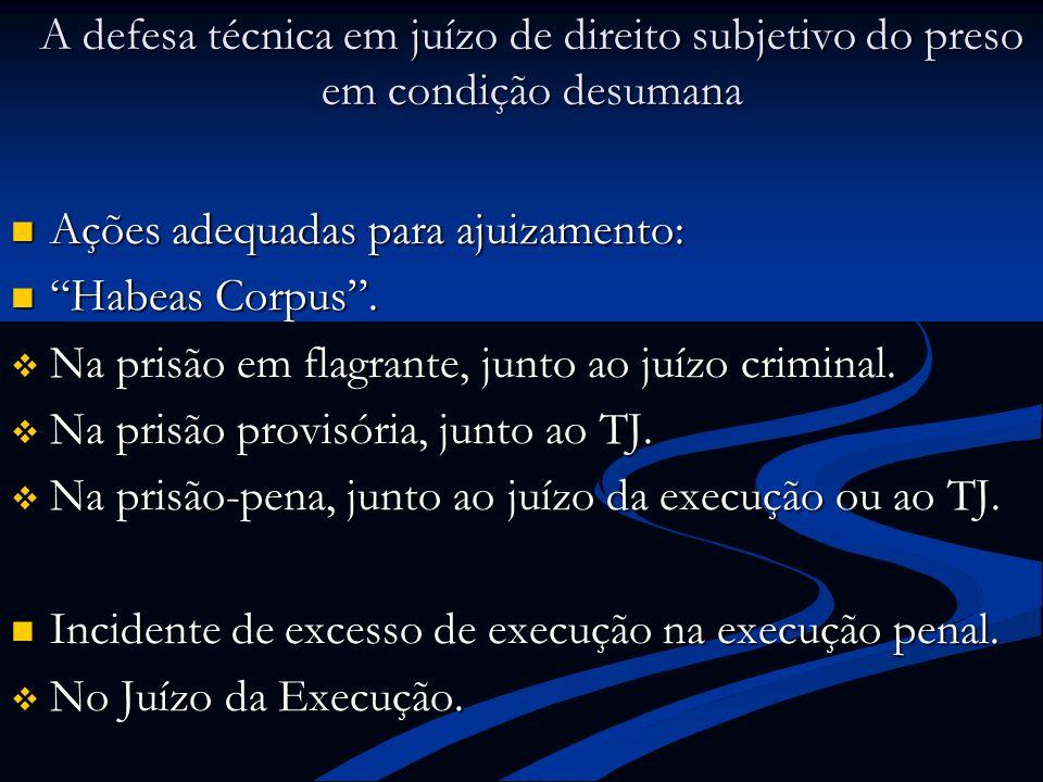 A defesa técnica em juízo de direito subjetivo do preso em condição desumana