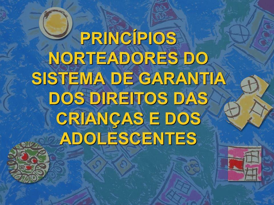 Princípios norteadores do Sistema de Garantia dos Direitos das Crianças e dos Adolescentes