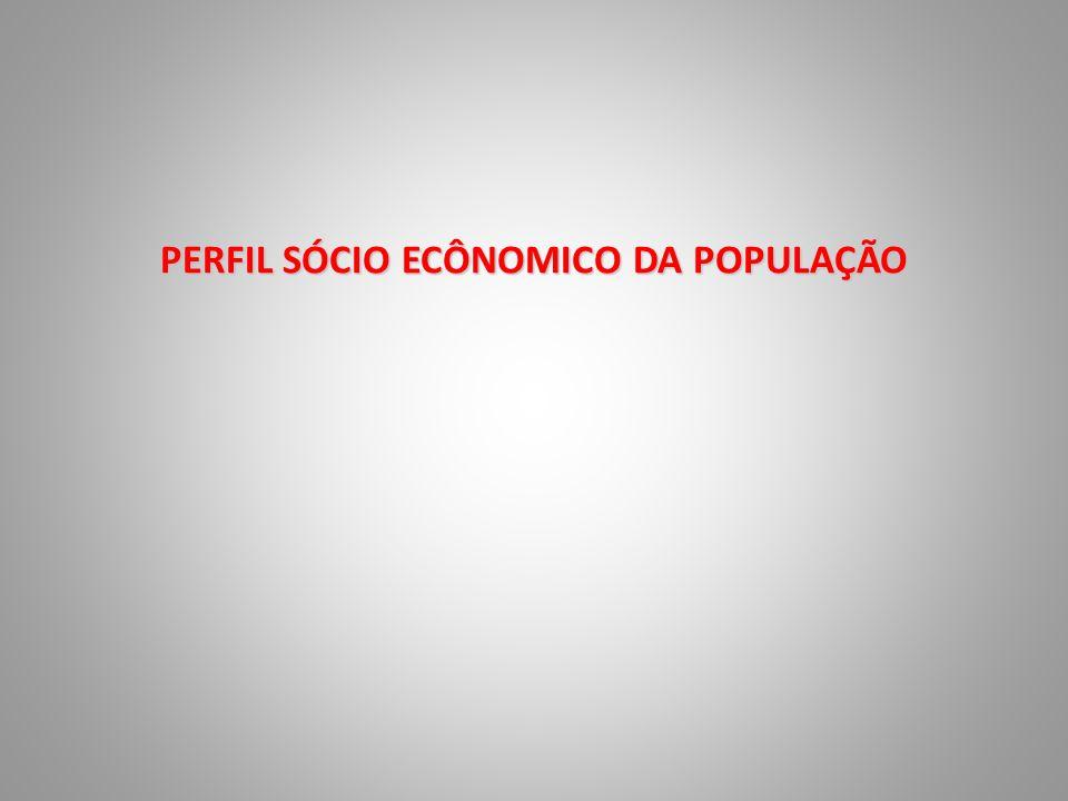 PERFIL SÓCIO ECÔNOMICO DA POPULAÇÃO