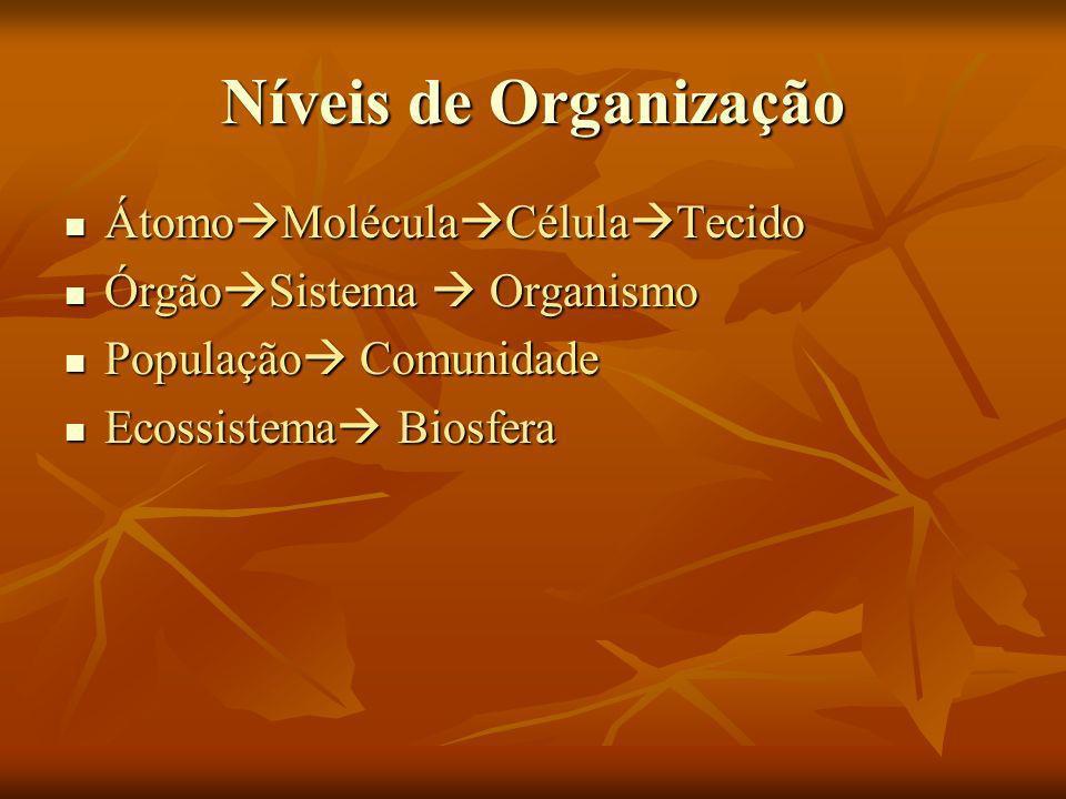 Níveis de Organização ÁtomoMoléculaCélulaTecido