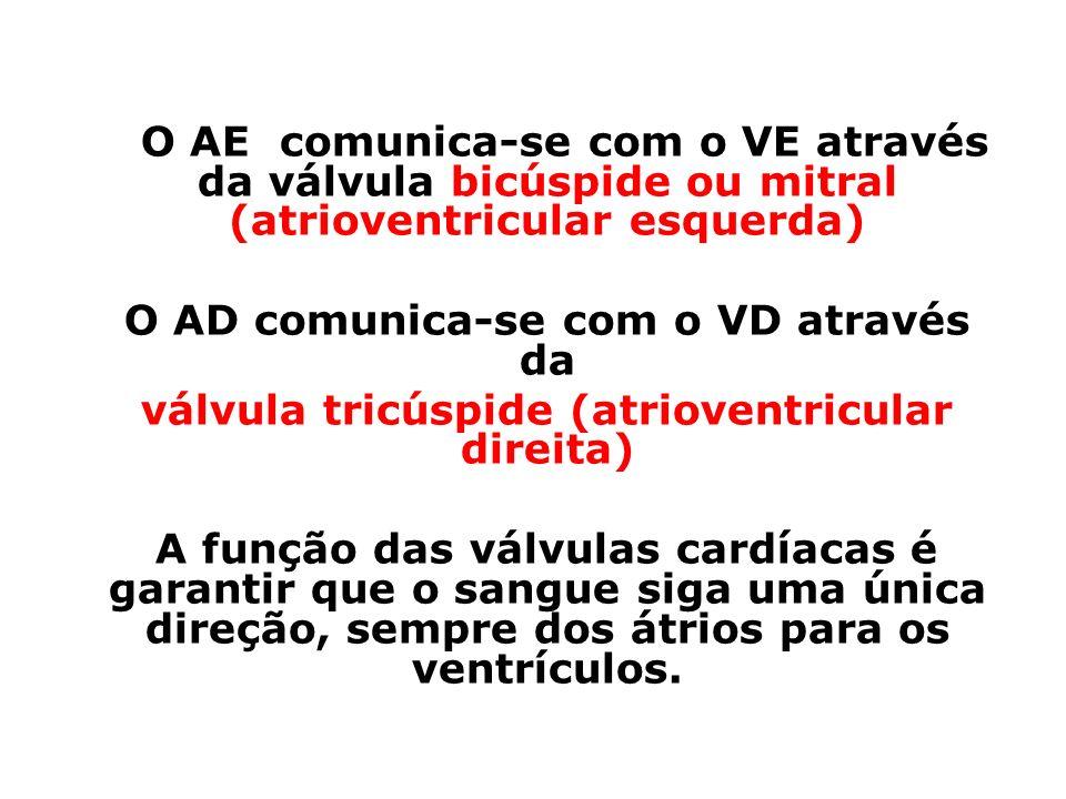 O AD comunica-se com o VD através da