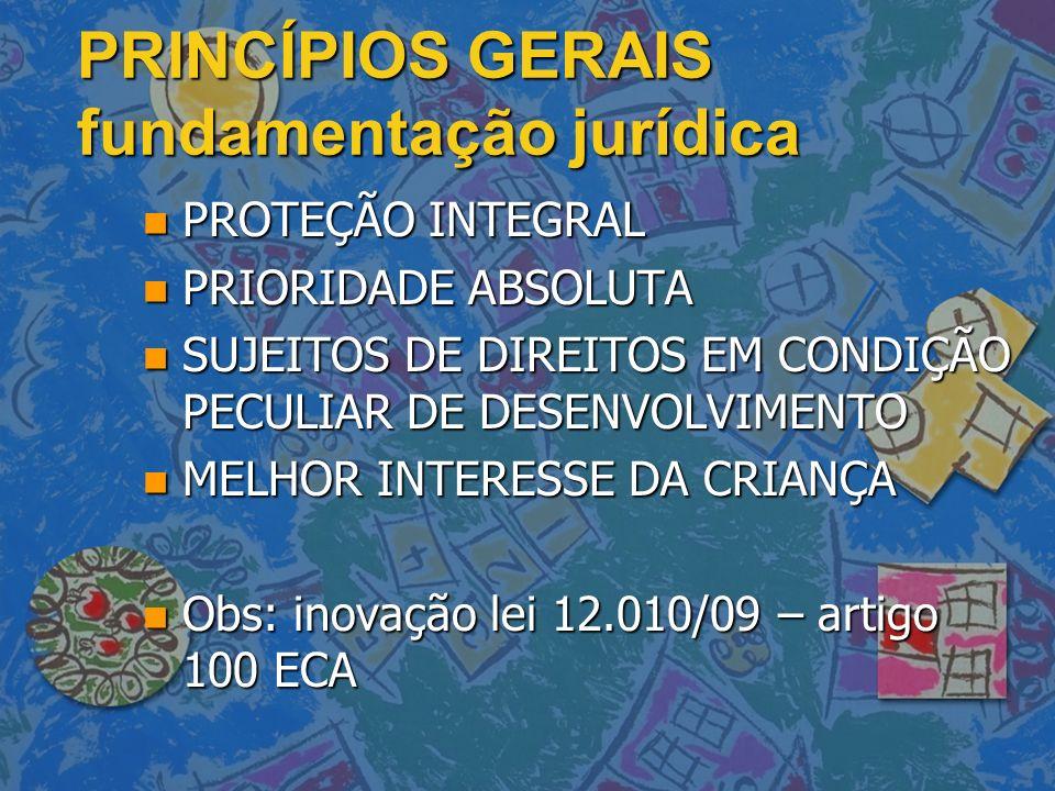 PRINCÍPIOS GERAIS fundamentação jurídica