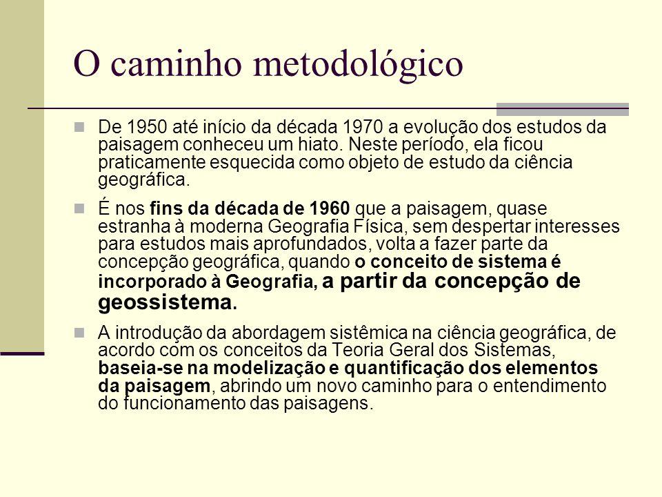 O caminho metodológico