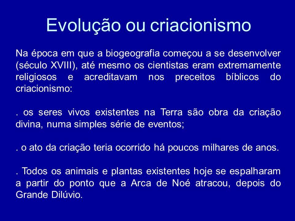 Evolução ou criacionismo