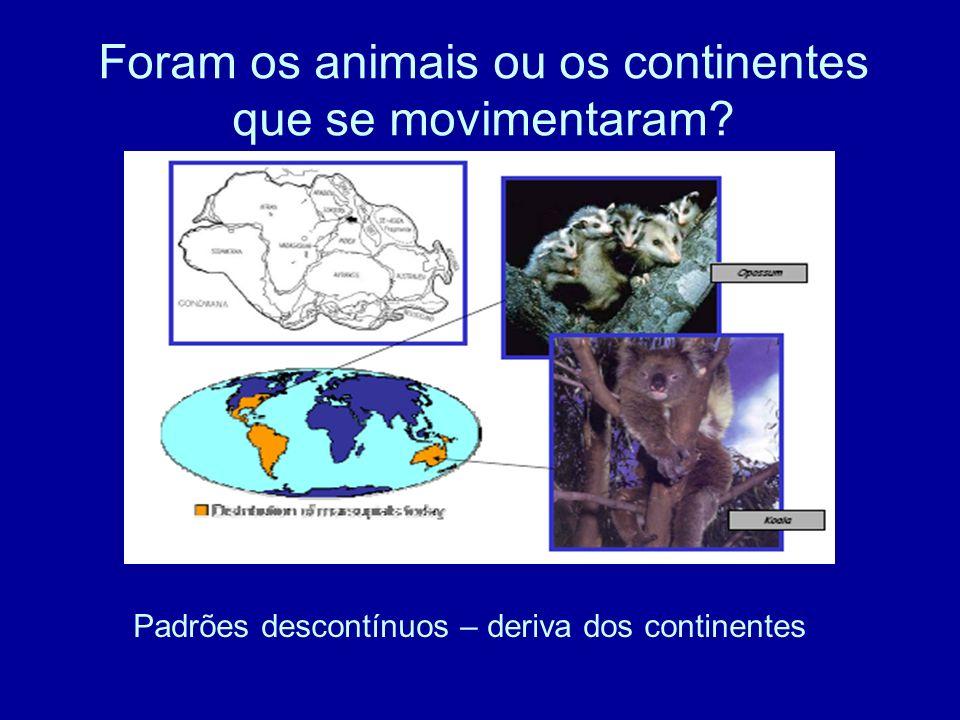 Foram os animais ou os continentes que se movimentaram