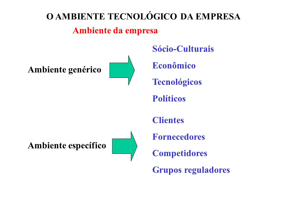 O AMBIENTE TECNOLÓGICO DA EMPRESA