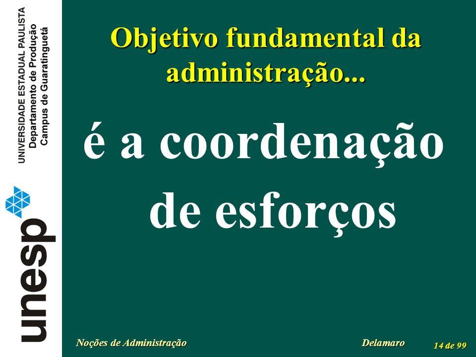 Objetivo fundamental da administração...