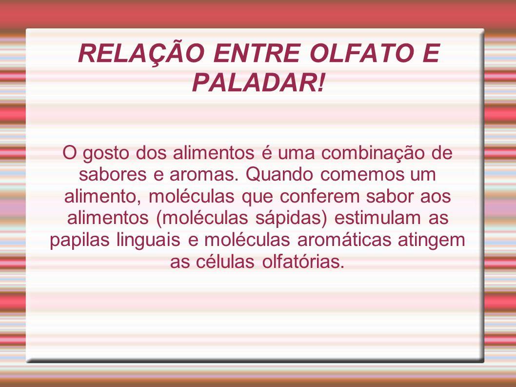 RELAÇÃO ENTRE OLFATO E PALADAR!