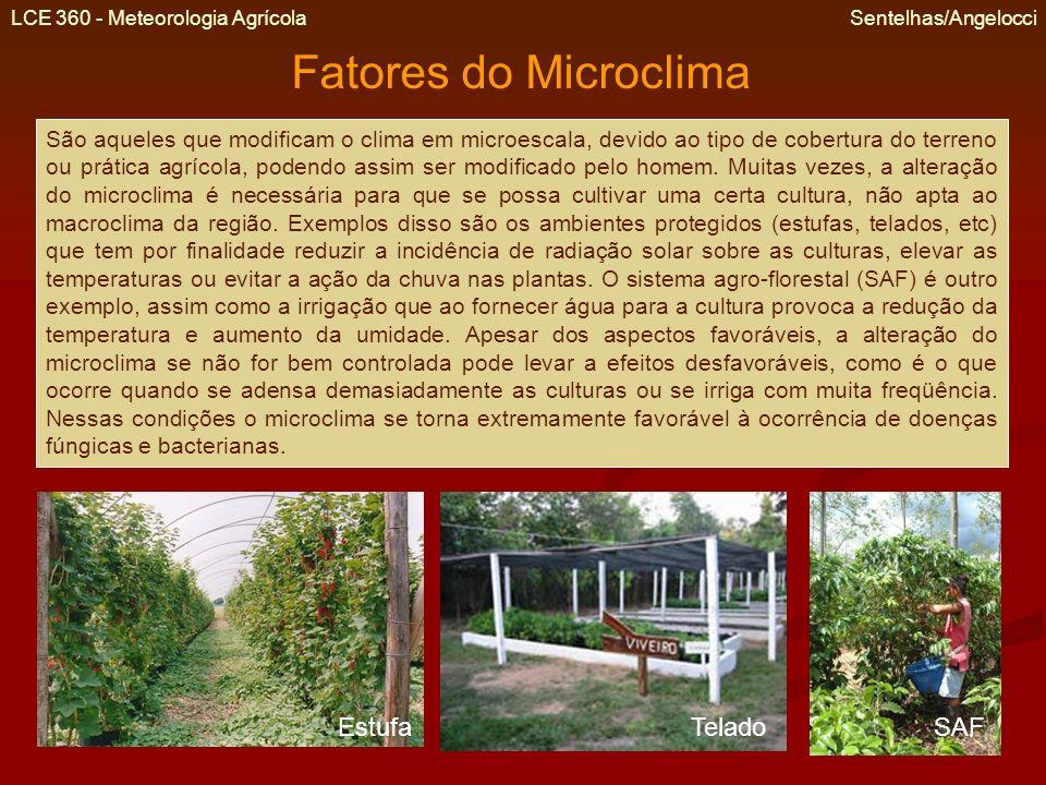 Fatores do Microclima Estufa Telado SAF