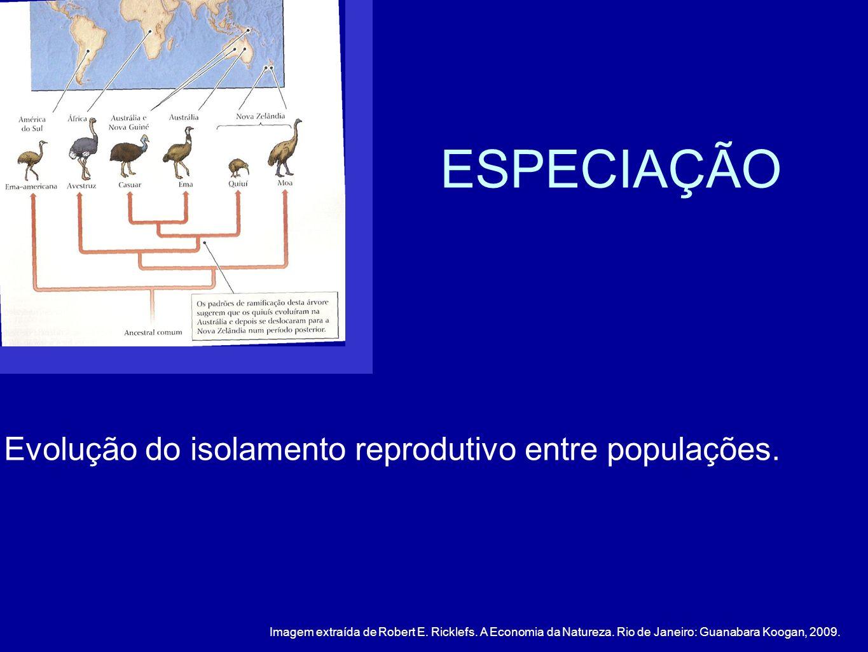 ESPECIAÇÃO Evolução do isolamento reprodutivo entre populações.