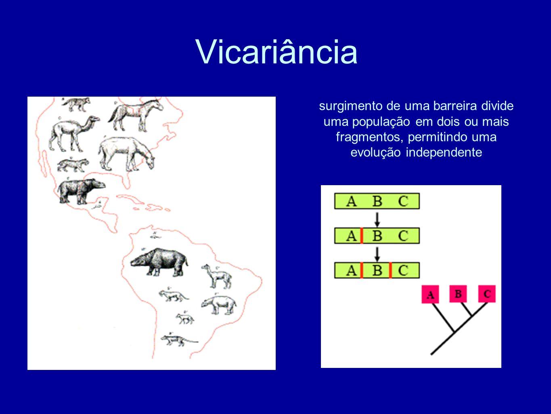 Vicariância surgimento de uma barreira divide uma população em dois ou mais fragmentos, permitindo uma evolução independente.