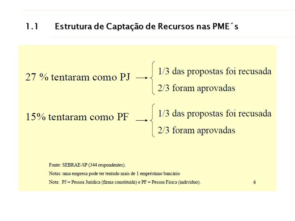 1.1 Estrutura de Captação de Recursos nas PME´s
