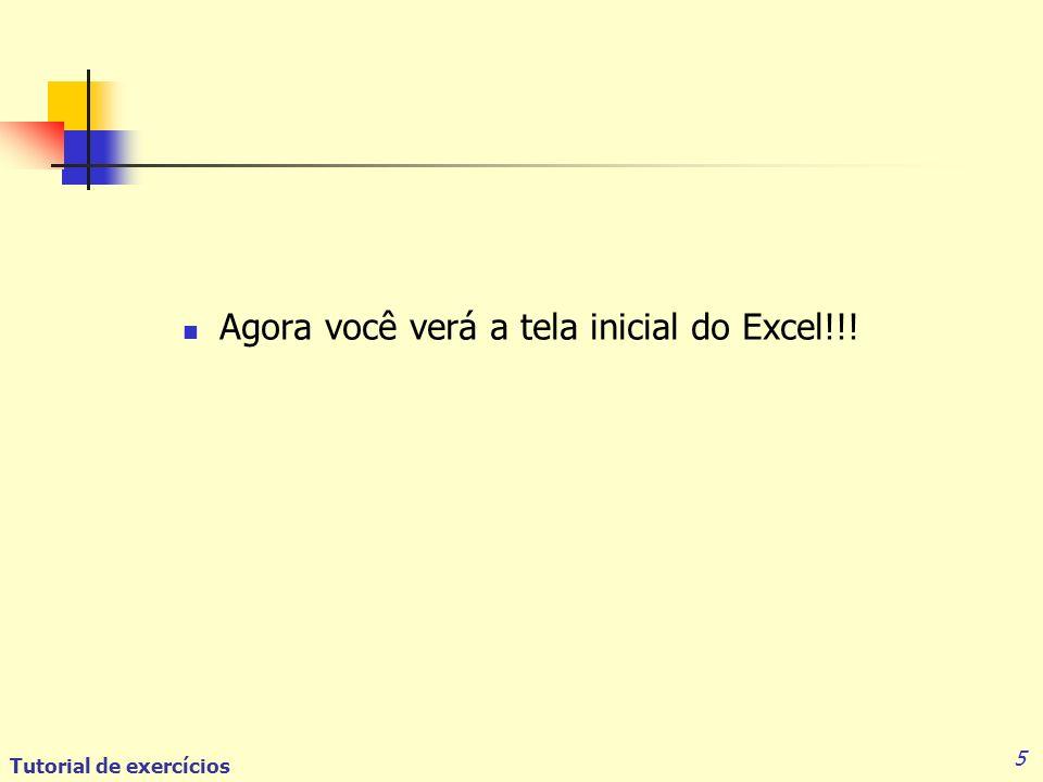 Agora você verá a tela inicial do Excel!!!